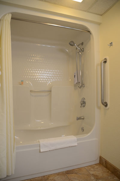removable shower head and grab bars